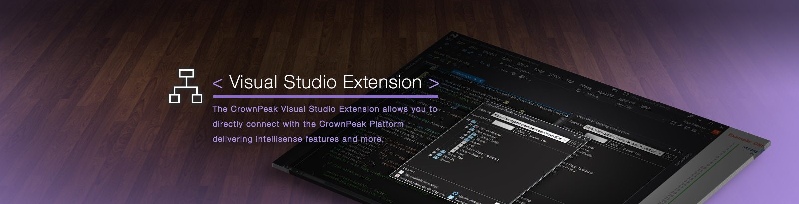 Visual Studio Extension